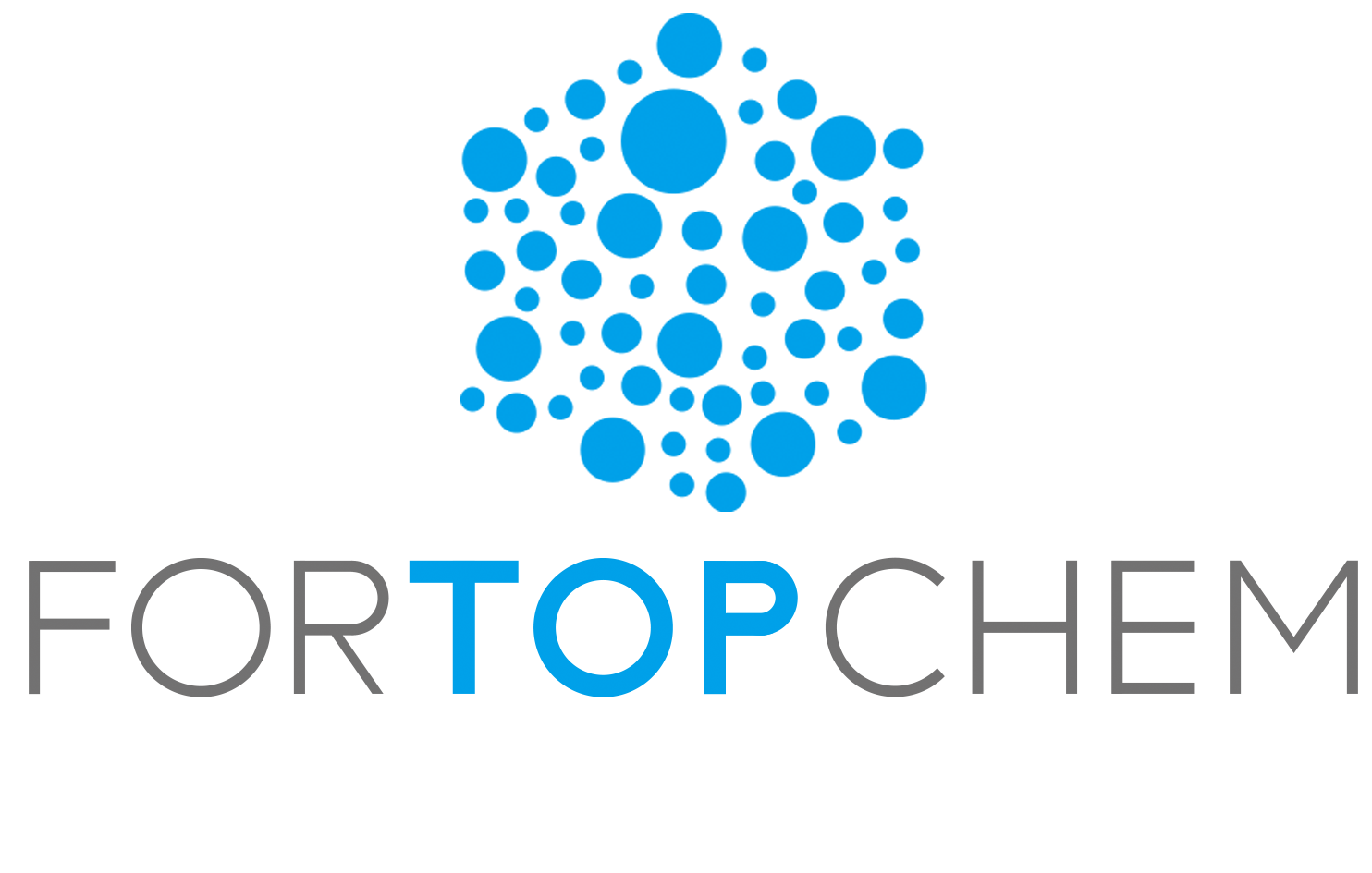 FORTOPCHEM TECHNOLOGY LIMITED